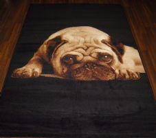 Modern Approx 7x5 150x210cm Woven Backed Pug Rugs Sale Top Quality Black/Beige
